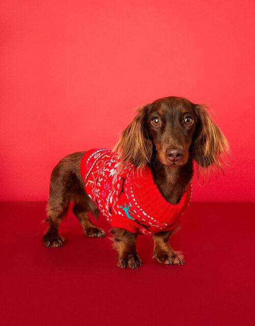 Love Christmas Fair Isle Dog Jumper, Red (RED), large